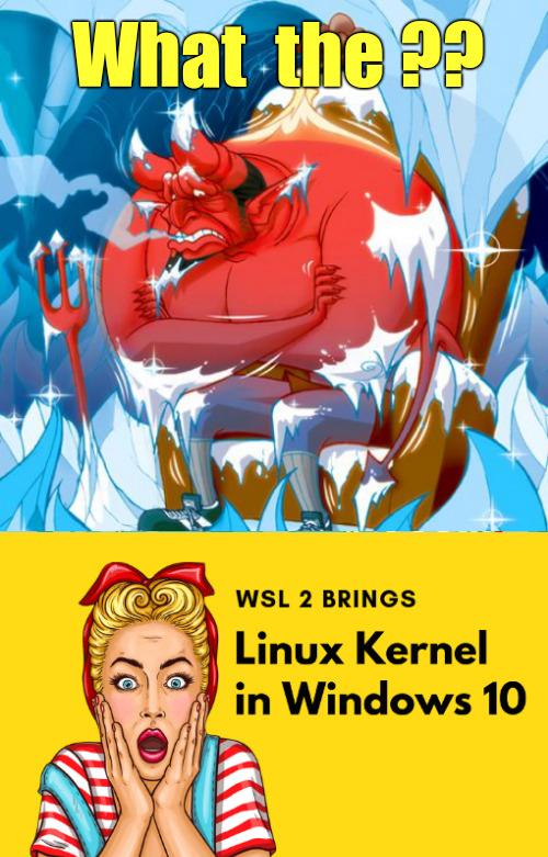 794 - WSL Win 10 Linux -FB.jpg